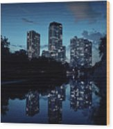 Chicago High-rise Buildings By The Lincoln Park Pond At Night Wood Print