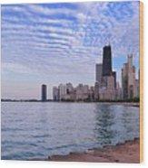 Chicago Lakeshore Wood Print