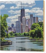 Chicago Lincoln Park Lagoon Wood Print