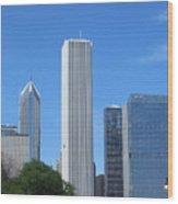 Chicago Skyline 6 Wood Print