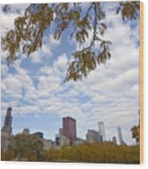 Chicago Skyline And Fall Colors Wood Print