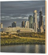 Chicago Skyline And Nature Preserve At Sunrise Wood Print