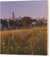 Chicago Skyline And Neighborhood Prairie Wood Print