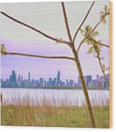 Chicago Skyline - The View From Montrose Point Wood Print