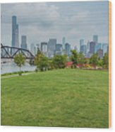 Chicago Skyline From The Southside Wood Print