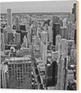 Chicago Skyline Landscape Wood Print