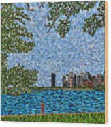Chicago - View From Lakefront Trail Wood Print