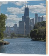 Chicago - View From Lincoln Park Lagoon Wood Print