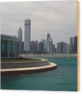 Chicago Waterfront Wood Print