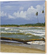 Chichirivihe Bay Wood Print