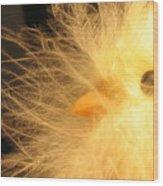 Chick Wood Print
