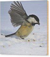 Chickadee-2 Wood Print