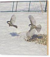 Chickadee-6 Wood Print by Robert Pearson