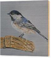 Chickadee Bird Wood Print