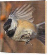 Chickadee Blurrrr Wood Print