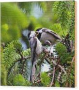 Chickadee Feeding Time Wood Print