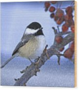 Chickadee With Craquelure Wood Print