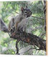 Chickaree On The Tree Wood Print