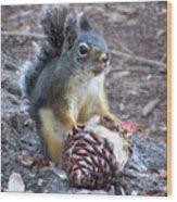 Chickaree Stripping A Pine Cone - John Muir Trail Wood Print