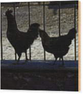 Chicken In Silhousette Wood Print