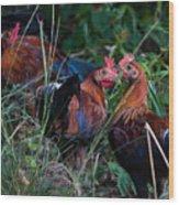 Chickens Wood Print