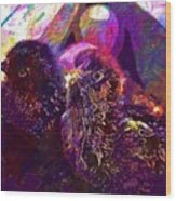 Chicks Hatched Fluffy Young Animal  Wood Print