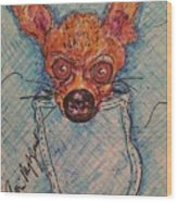 Chihuahua In A Pocket Wood Print