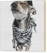 Chihuahua Wearing A Scarf And A Cowboy Hat Wood Print