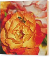 Chihuly Rose With Bee Wood Print