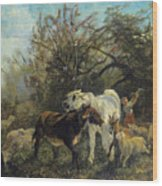 Child And Sheep In The Country Wood Print