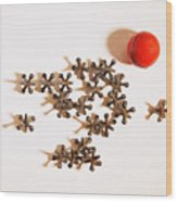 Childhood Game Of Jacks Wood Print