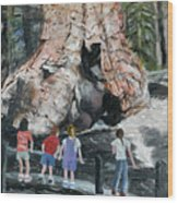Children At Sequoia National Park Wood Print