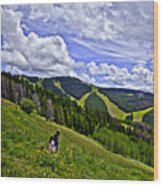 Children On Vail Mountain Wood Print