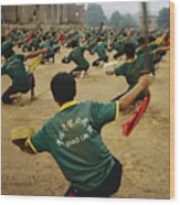 Children Practice Kung Fu In A Field Wood Print