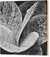 Children's Garden Leaves Wood Print