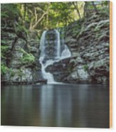 Child's Park Waterfall 2 Wood Print