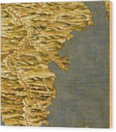 Chile And Argentina With The Strait Of Magellan Wood Print