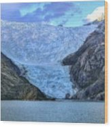 Chilean Fjords Chile Wood Print