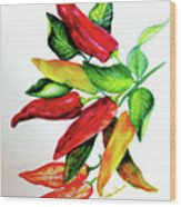 Chillies From My Garden Wood Print by Karin  Dawn Kelshall- Best