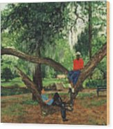 Chillin In City Park Nola Wood Print