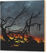 Chilling Sunset Wood Print