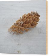 Chilly Pine Cone In Snow Wood Print