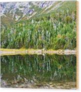 Chimney Pond Reflections 2 Wood Print