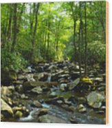 Chimney Tops Trail Wood Print