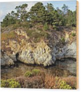 China Cove, Point Lobos Wood Print by Yair Karelic