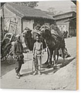 China: Peking, 1901 Wood Print