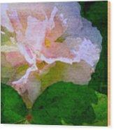 China Rose Wood Print