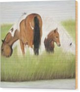 Chincoteague Ponies Wood Print