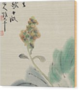 Chinese Cabbage Wood Print