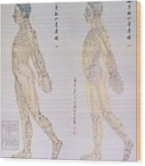 Chinese Chart Of Acupuncture Points Wood Print